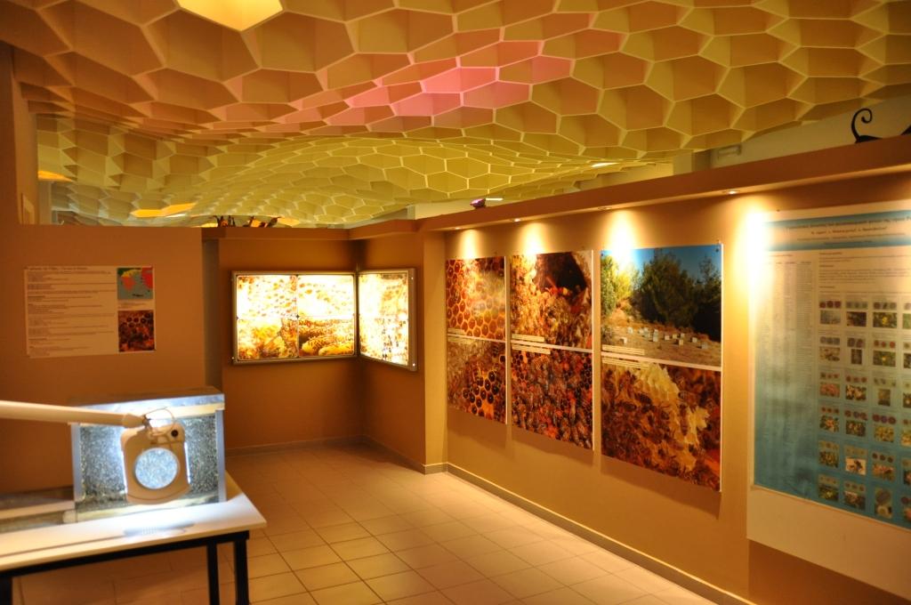 מוזיאון הדבורים ברודוס