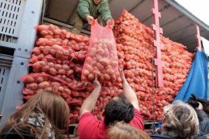 מהפכת תפוחי האדמה ביוון